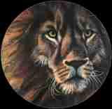 leeuwenkop-finalZ